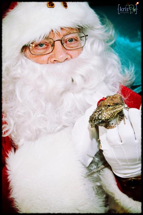 pet-pics-with-santa-2013